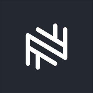 Netflayo Logo