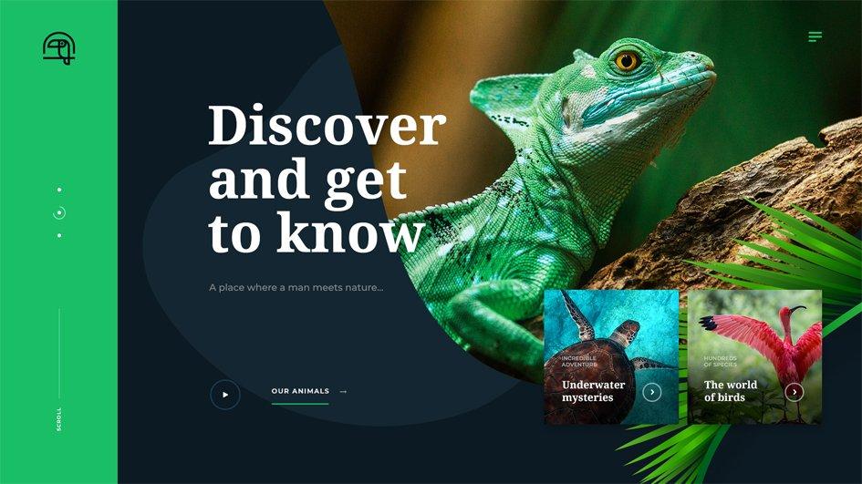 creative website layouts