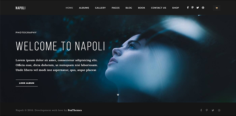 Napoli Portfolio WordPress Theme