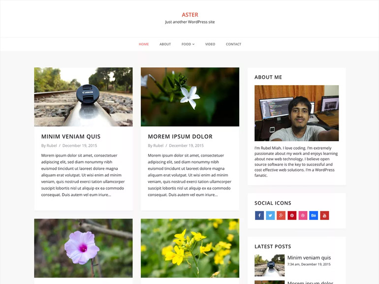 blog wordpress themes simple