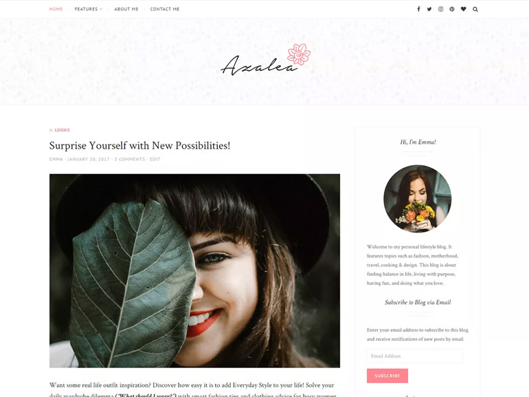 vintage wordpress blog themes
