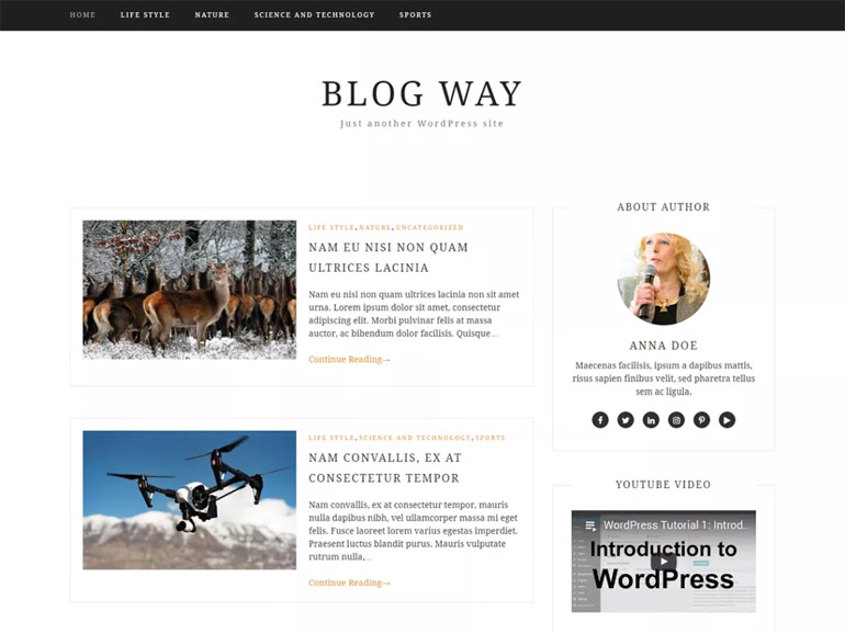 mommy blog wordpress themes