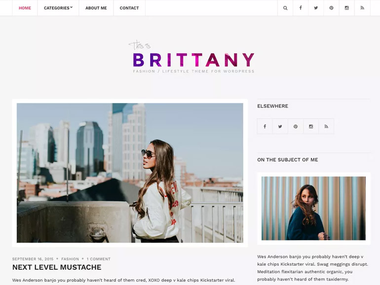 elegant wordpress blog themes