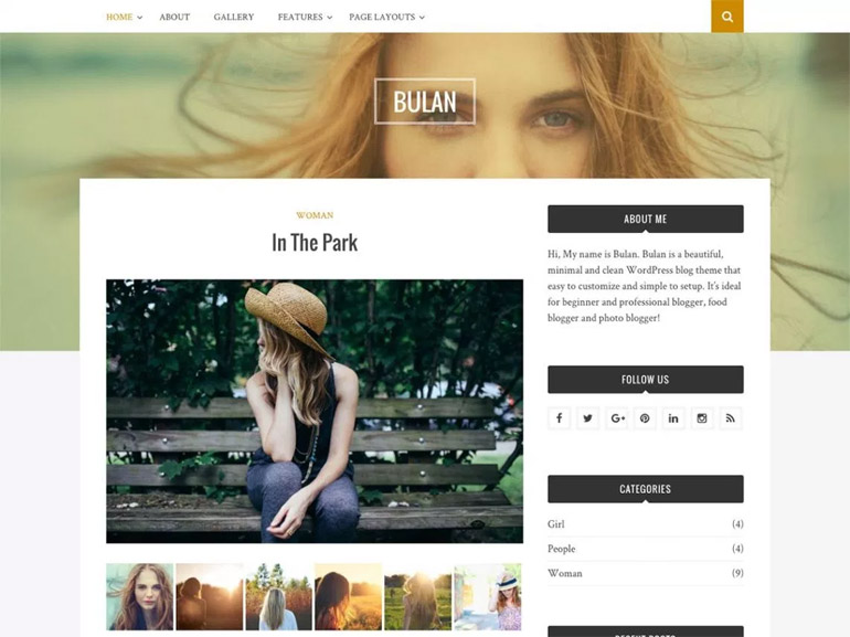 wordpress blog website themes