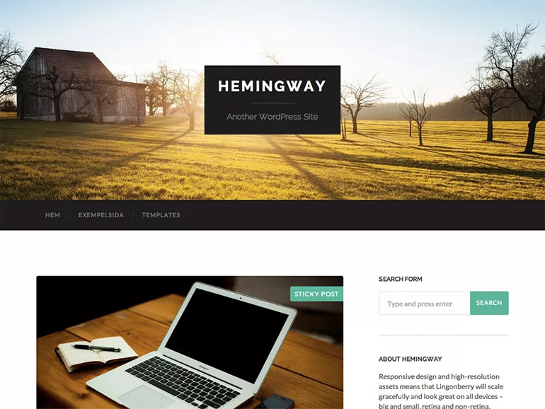 best simple wordpress blog themes