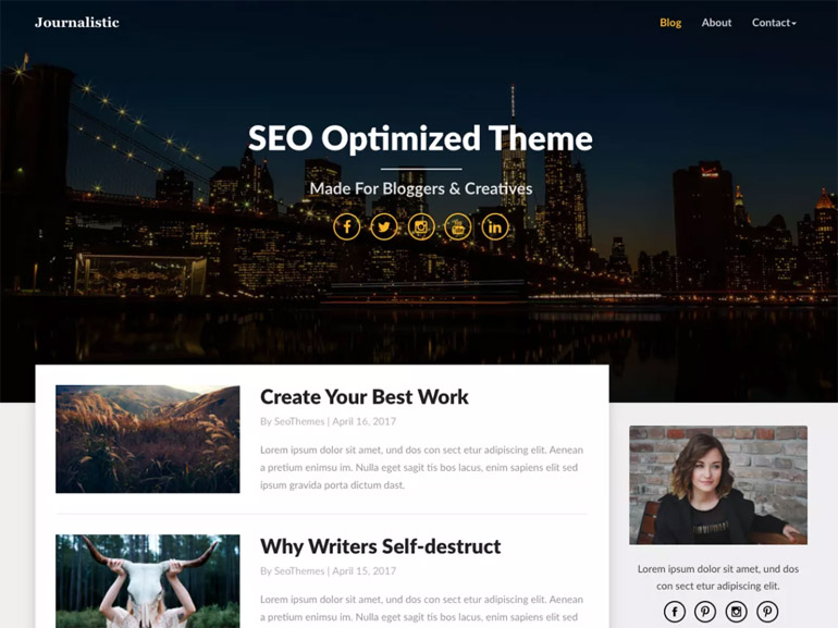 free elegant wordpress blog themes
