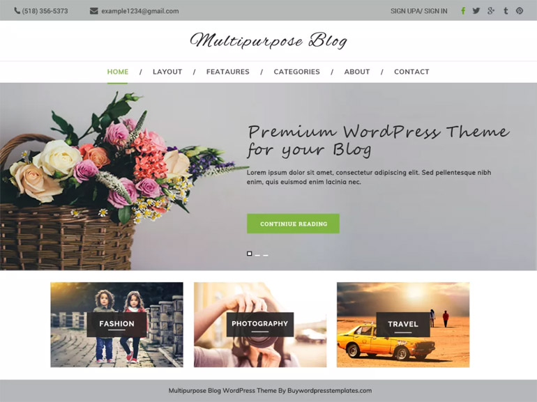 best professional blog wordpress themes