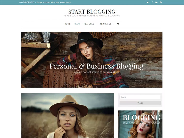 best minimal wordpress blog themes