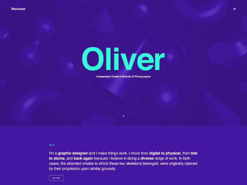 portfolio wordpress themes