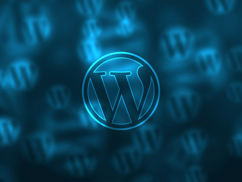 WordPress Business Plan