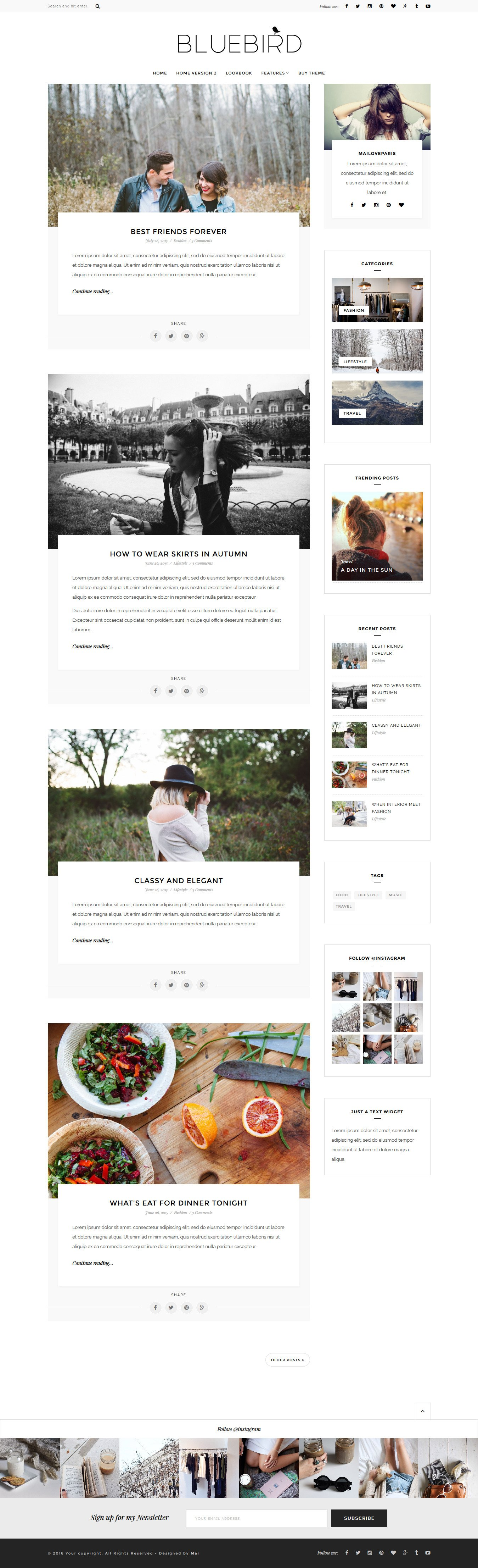 Bluebird WordPress blog theme