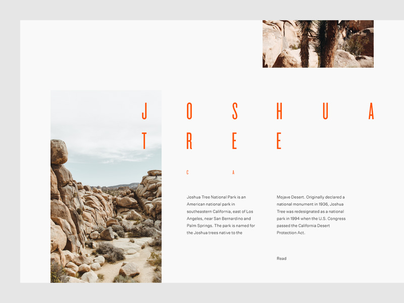 grid web design inspiration