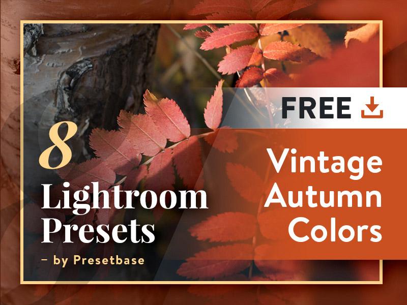 Vintage Autumn Colors FREE Lightroom Presets