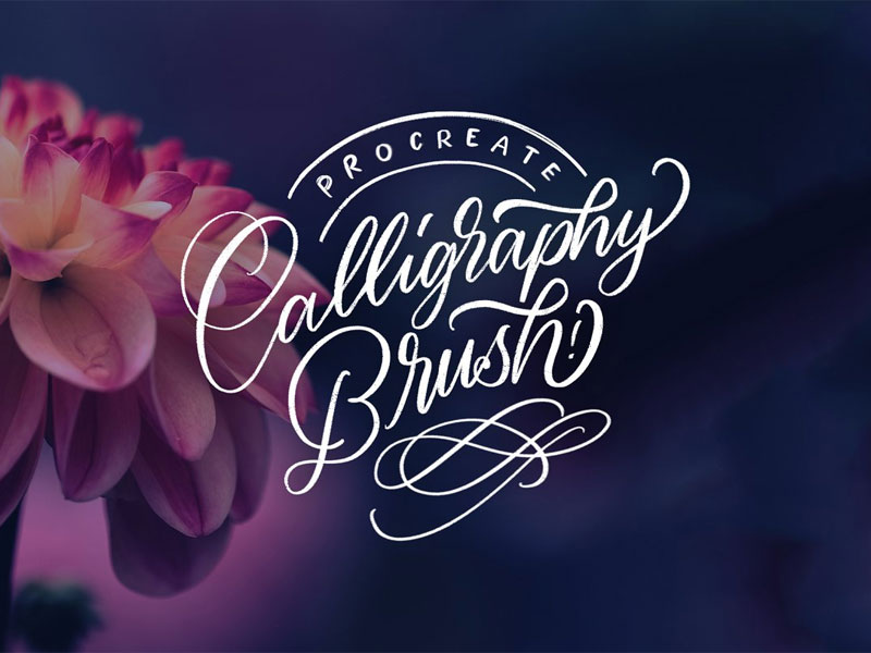 Procreate Calligraphy Brushes